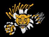 Wildcat Followup