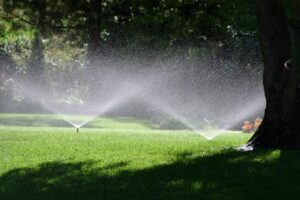 Lawnco Lawn Care Sandpoint Idaho
