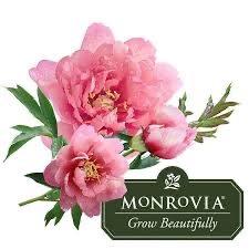 Monrovia Ponderay Garden Center