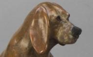 Dog Paddle Basset/Lab Close Up