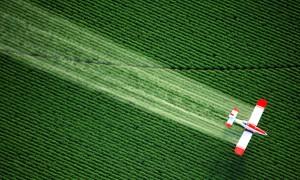 pesticide contamination