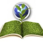 How to Write a Clear Environmental Policy for Your Company
