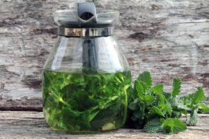 home grown medicinal herbs