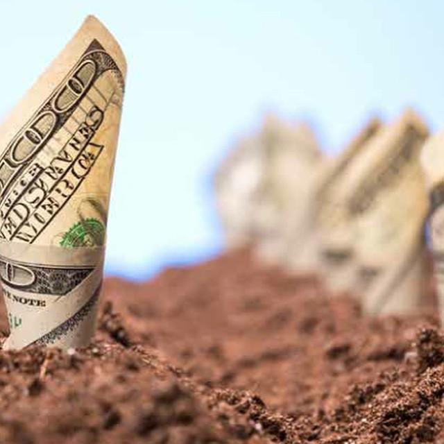 Spend Less, Live Greener: 7 Frugal Tips