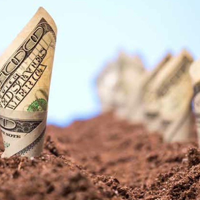 Green Investing: Why You Should Invest in the Environment