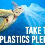 Plastic bag ban