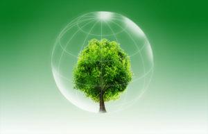 green living habits
