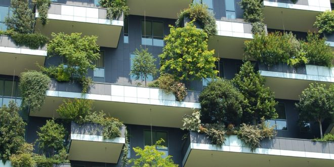 Eco Friendly and Sustainable Green Building