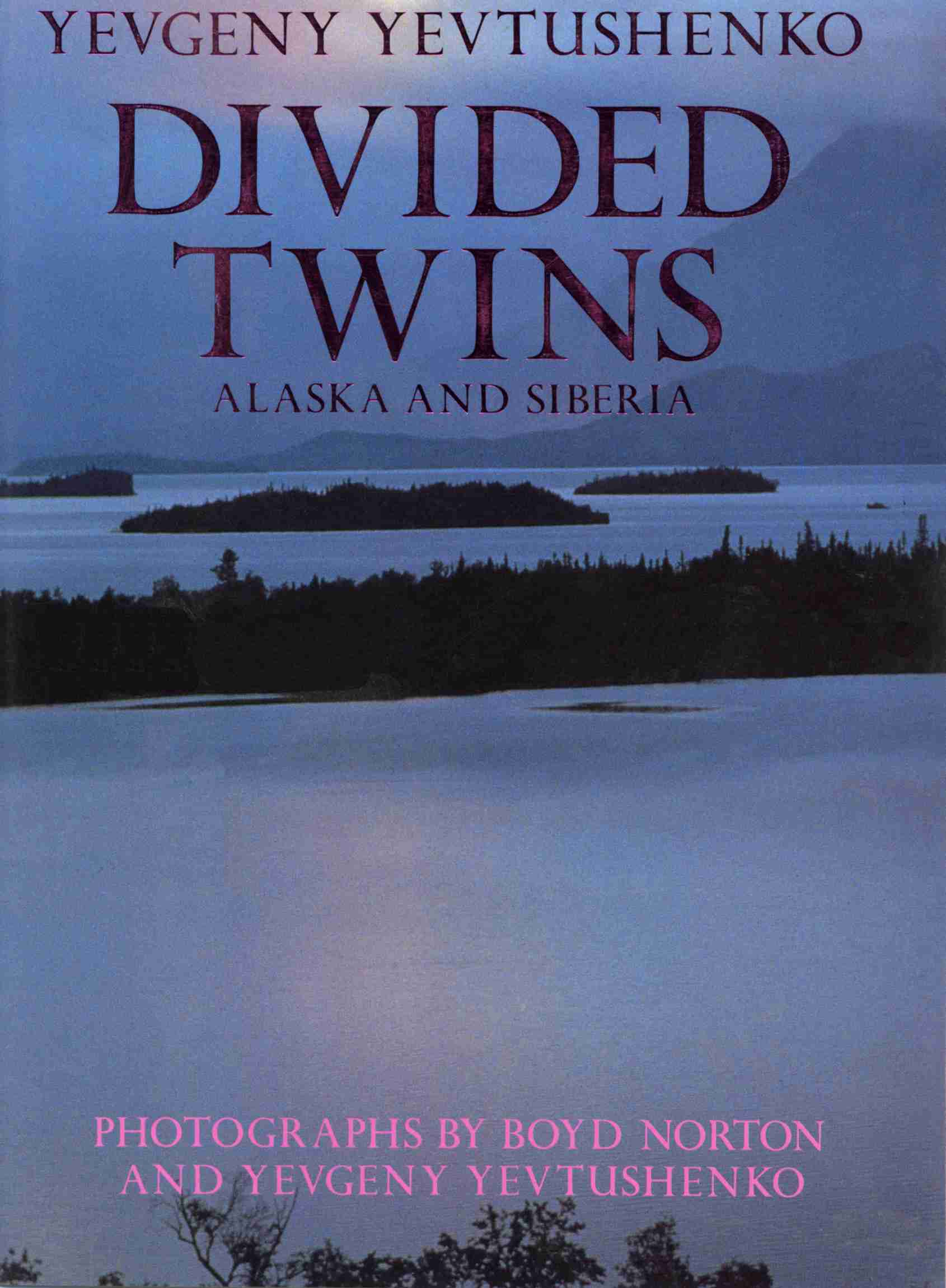 DividedTwinsBookCover