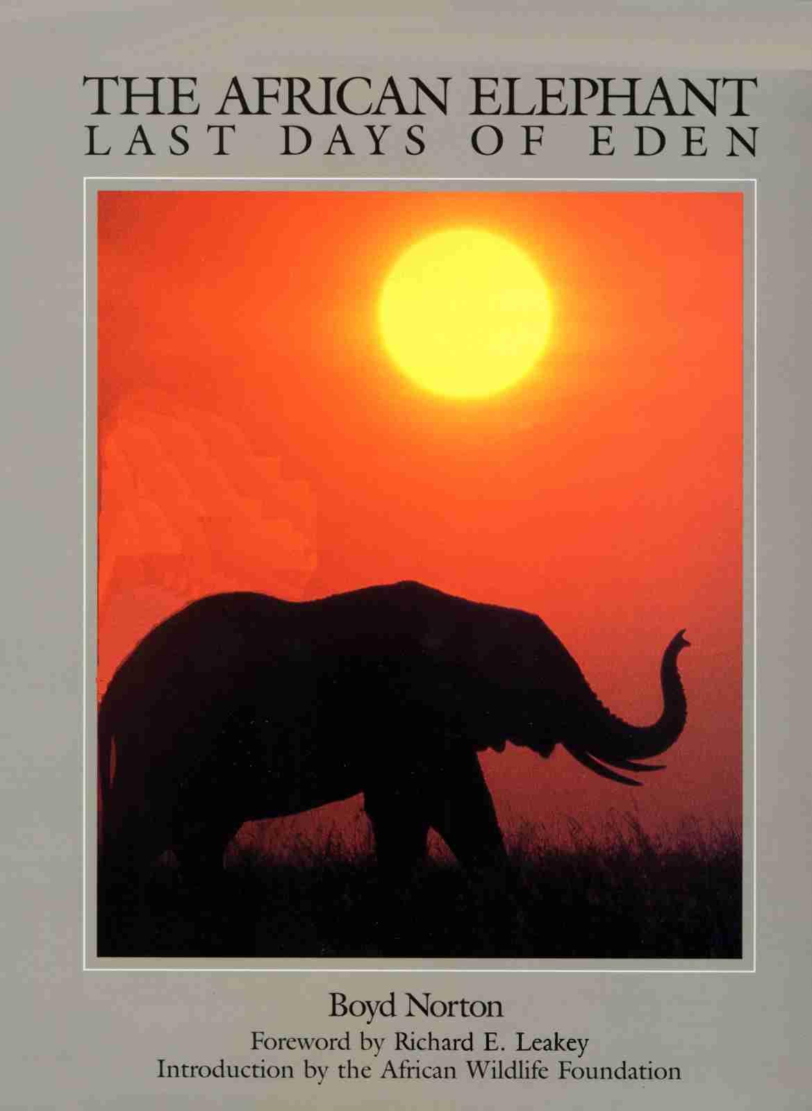 ElephantBookCover