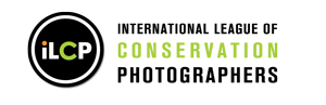 ilcp-logo-new