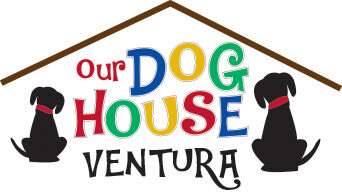 Our Dog House