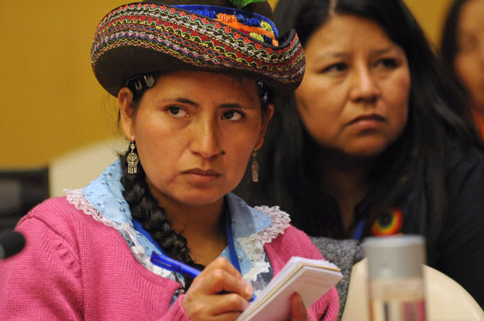 An indigenous activist participates in a meeting during the Commission on the Status of Women, CSW59