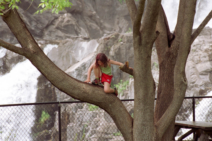 A girl climbs a tree in Westchester County, New York.