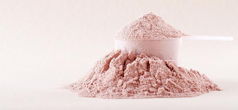 Supplement Reviews - CheckMeowt Protein Powder Header Image