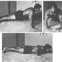 Arnold Schwarzenegger Home Workout Review - Featured Image - Push Ups - CheckMeowt