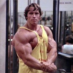 Arnold Schwarzenegger's Blueprint to Mass Review - Featured Image