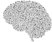 Music Brain Learning Memory