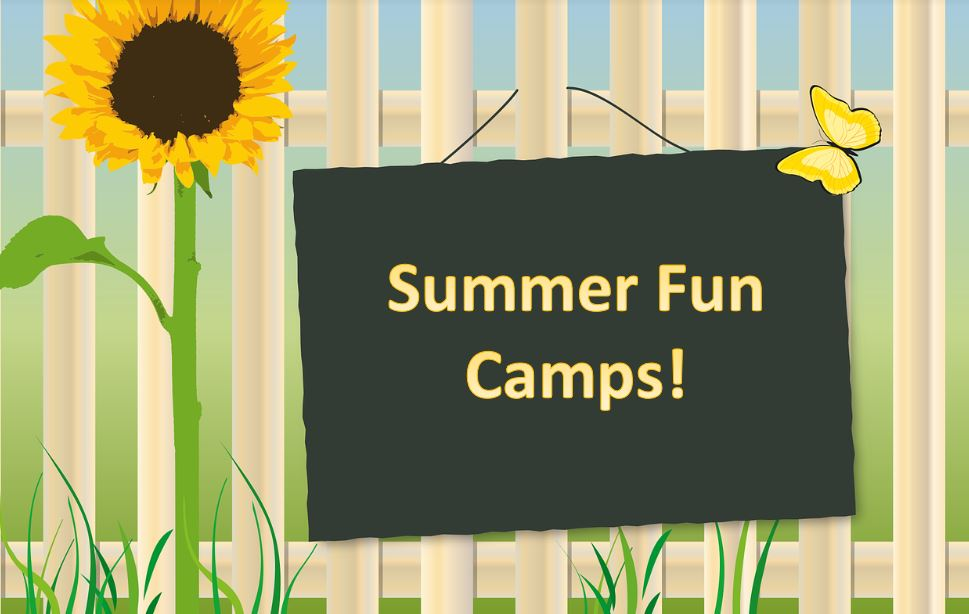 Amazing Summer Camp Ideas in the Greater Toronto Area