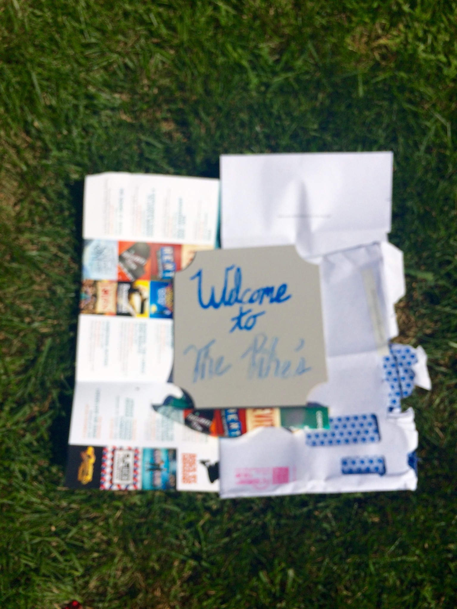 The Before Photo - Incorporate Your Dogs into this DIY Welcome Sign for Home Entryway Using a Cricut Die Machine and Vinyl