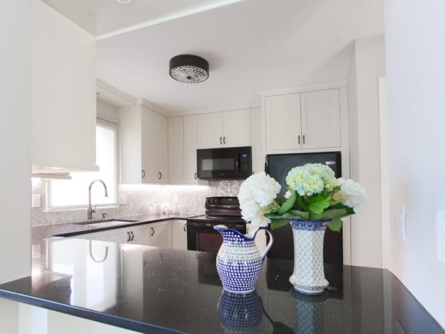 Condo-remodel-design-kitchen