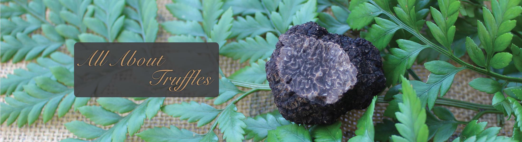 California Perigord Truffle