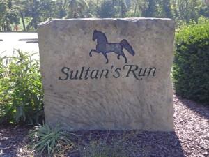 DSC03126 Sultans Run DS