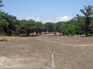 DSC07011 Oak Meadows 18 DS