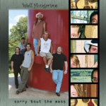 Sorry Bout the Mess Album | Well Hungarians