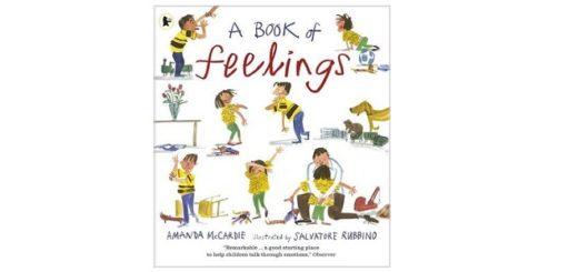Feature Image - A Book of feelings by Amanda McCardie