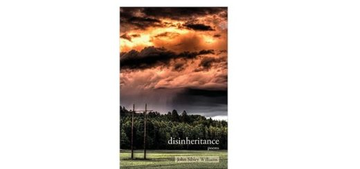 feature-image-disinheritance-by-joseph-sibley-williams