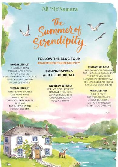 Summer of serendipity tour poster