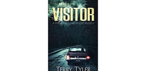 Feature Image - The Visitor by Terry Tyler