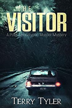 The Visitor by Terry Tyler