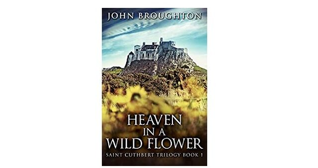 Feature Image - Heaven in a Wildflower by John Broughton