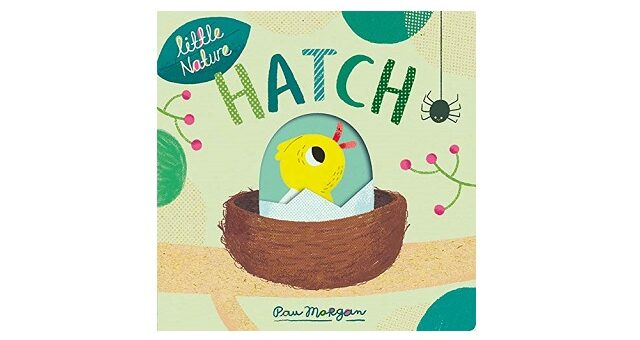 Feature Image - Hatch by Pau Morgan