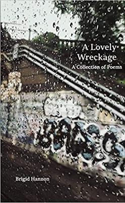 A Lovely Wreckage by Brigid Hannon