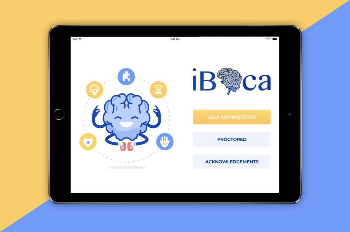 iBOCA-portfolio-1