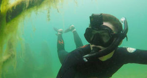 Meet The Man Who Dives Everyday And Finds Lost Treasures In The Sea!