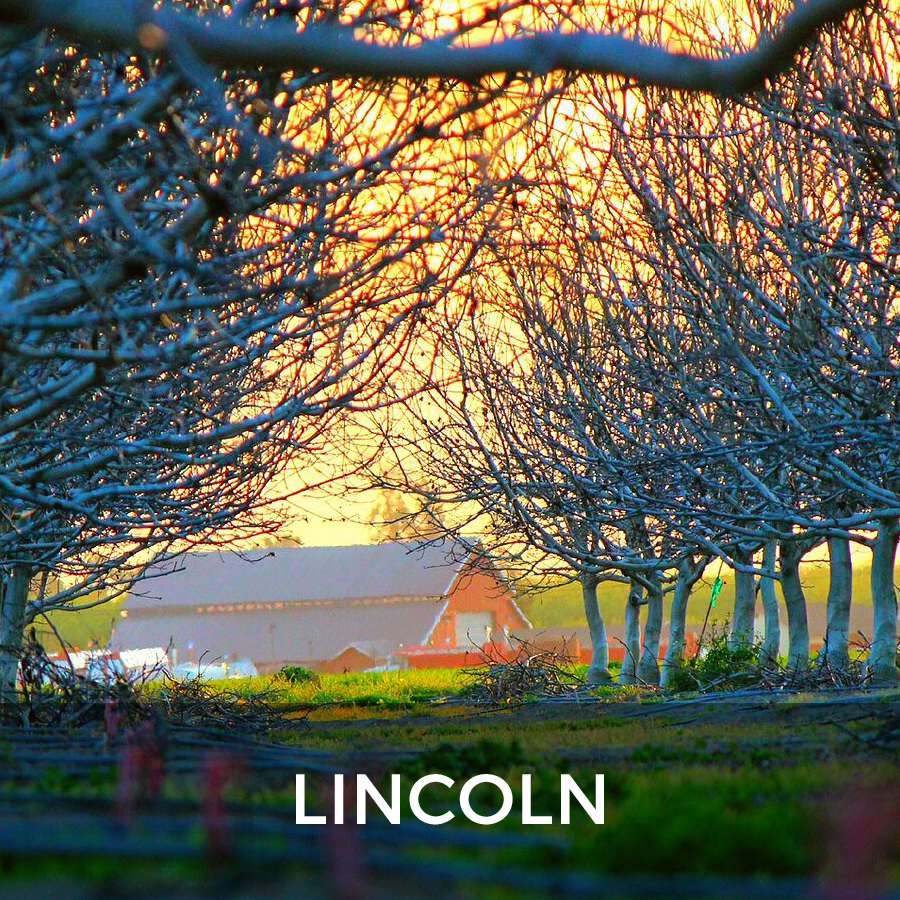 Niagara Region Real Estate - Lincoln