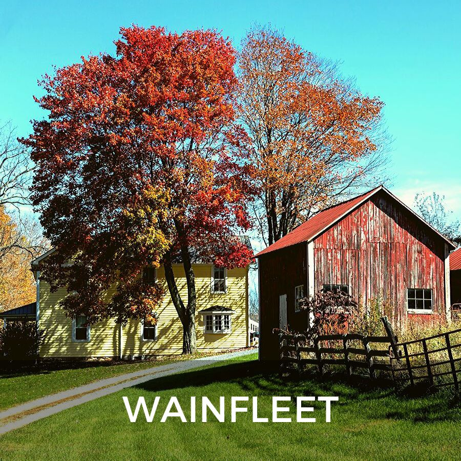 Niagara Region Real Estate - Wainfleet