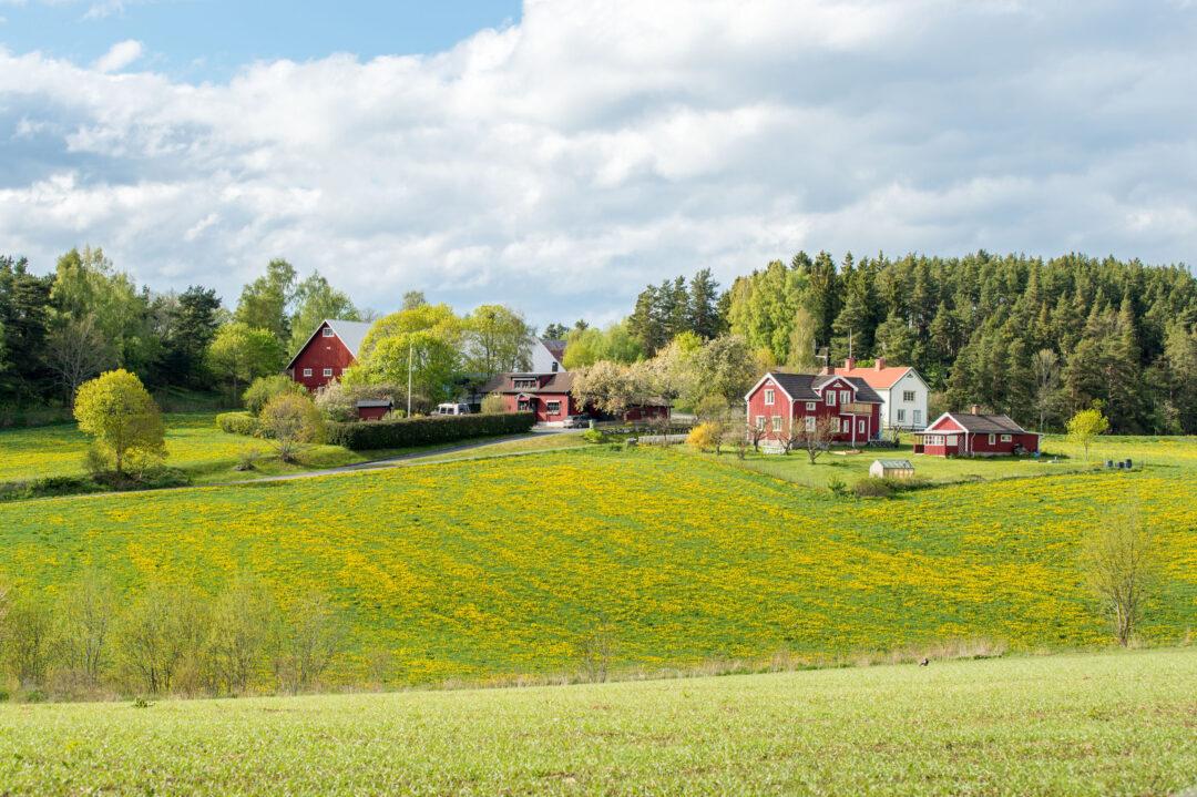 Caledon Farm
