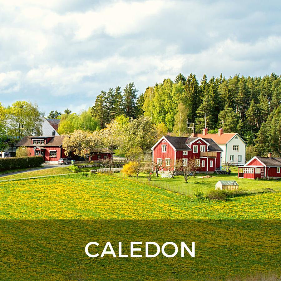 Caledon rural farm for sale