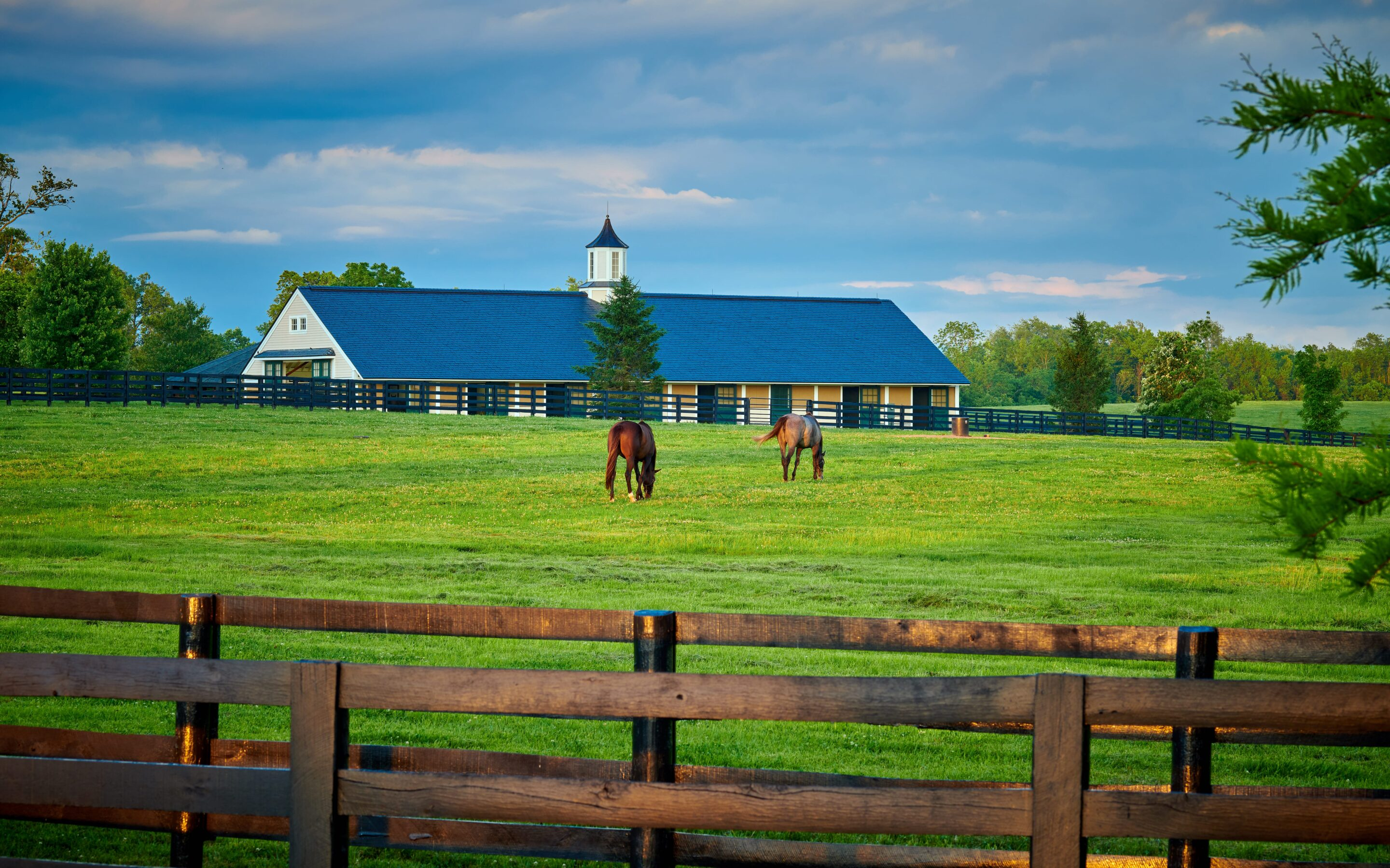 5 Factors Affecting Horse Farm Prices in Ontario