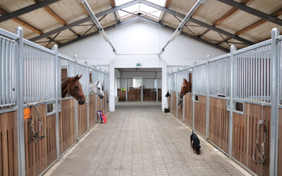 6 Common Questions About Leasing An Equestrian Facility
