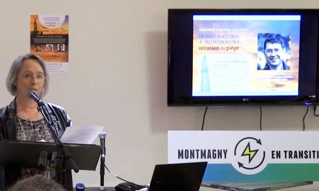 Assemblée publique citoyenne sur le gaz naturel: Montmagny en transition poursuit le travail par la diffusion des conférences en ligne