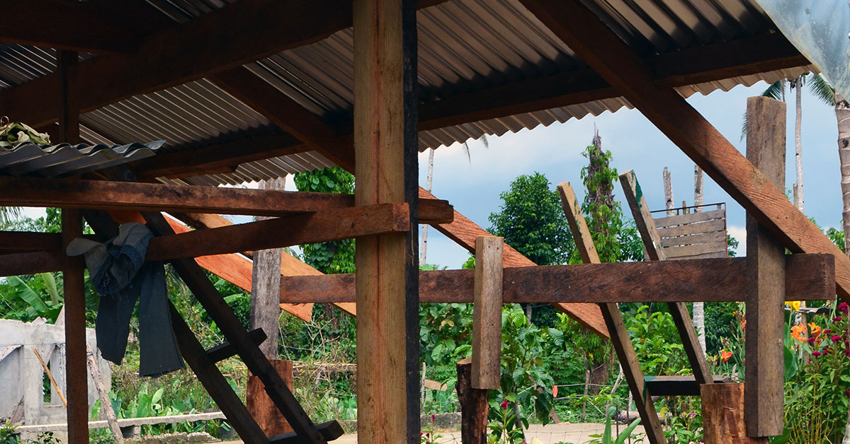Timber beams intersect under roofing