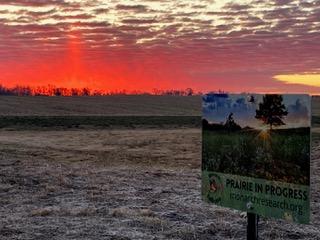 Smith Urban Prairie