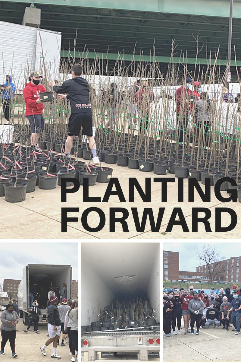 Planting Forward Unity Point