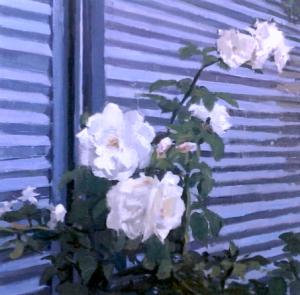 Royal Blue Rose Bloodlines